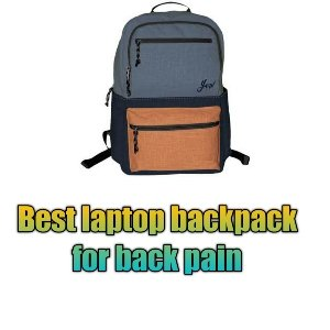 Best laptop backpack for back pain